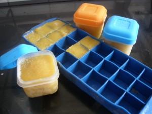 Bewaar de fruitmoes in kleine bakjes of in het bakje voor de ijsblokjes.